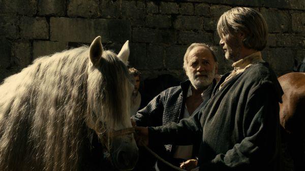 Ein herausgeputztes Pferd, davor zwei Männer. Der ältere schaut den jüngeren an, der jüngere blickt auf das Pferd.