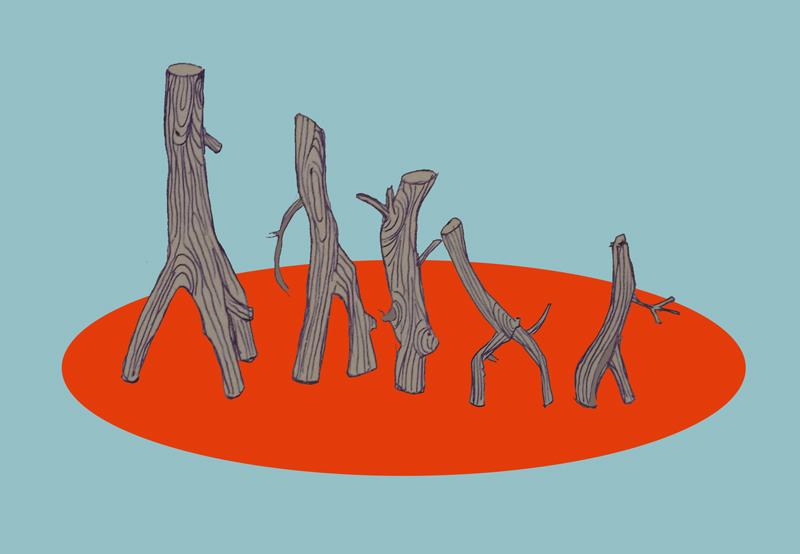 Fünf Stöckchen in einem Kreis stehend.