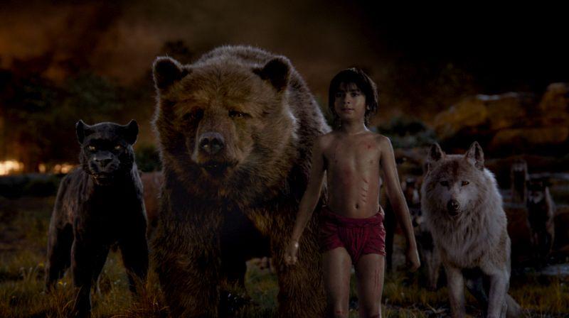 Szenenbild aus Das Dschungelbuch: Ein schwarzer Panther, ein Lippenbär, ein Menschenkind und eine Wölfin.